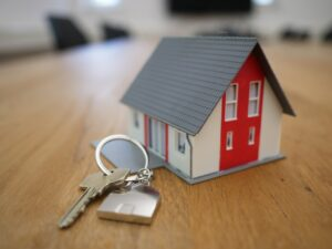 pros and cons of property auctions